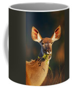Kudu Portrait Eating Green Leaves Coffee Mug