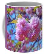 Kwanzan Cherry Blossoms Coffee Mug