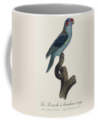 La Perruche A Bandeau Rouge / Musk Lorikeet - Restored 19th Cent. Lorikeet Illustration By Barraband Coffee Mug