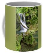 La Vaioaga Waterfall Coffee Mug