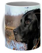 Labrador Retriever Waiting In Blind Coffee Mug