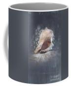 Lace Murex Sea Shell In Blue Coffee Mug