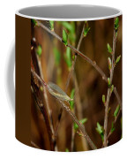 Lacewing Coffee Mug