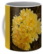 Lady Banks Rose With Sepia Background Coffee Mug