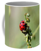 Lady Beetle Coffee Mug