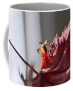 Lady Bug Flight Coffee Mug