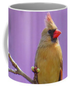 Rare Yellow Cardinal On A Cherry Branch Coffee Mug