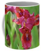 Lady In Red Iris Coffee Mug