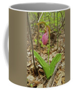 Lady Slipper 2037 Coffee Mug