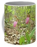 Lady Slipper 2046 Coffee Mug