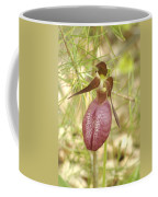Lady Slipper Blossom Coffee Mug