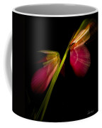 Lady Slippers As Running Shoes Coffee Mug