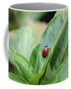 Ladybug On A Plant Leaf Coffee Mug