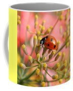 Ladybug On Fennel Coffee Mug