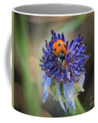 Ladybug On Purple Flower Coffee Mug