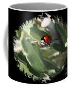 Ladybug On Sage With Swirly Framing Coffee Mug