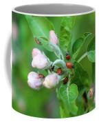 Ladybugs On Apple Blossoms Coffee Mug