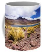 Laguna Miniques Coffee Mug