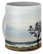 Lake 007 Coffee Mug