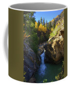 Lake Creek Falls Coffee Mug