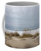 Lake Erie Sand Dunes Dry Grass And Ice Coffee Mug