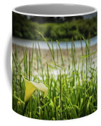 Lake Lily Coffee Mug