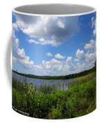 Lake Tarpon Coffee Mug
