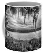 Lake Wauberg   Coffee Mug by Howard Salmon