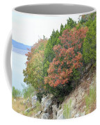 Lake034 Coffee Mug