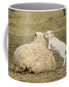 Lamb Jumping On Mom Coffee Mug