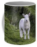 Lamb On The Isle Of Skye Coffee Mug
