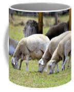 Lambswool Coffee Mug