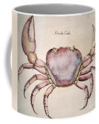 Land Crab Coffee Mug