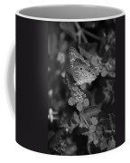 Landed Coffee Mug