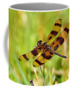 Landing Spot Coffee Mug