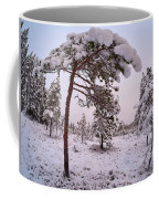 Landscape In Pastel Colors Coffee Mug