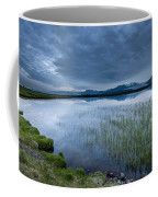 Landscape With Water Grass Coffee Mug