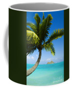 Lanikai Palm Coffee Mug