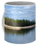 Large Pond Coffee Mug