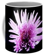 Large Purple Chrysanthemum-1 Coffee Mug