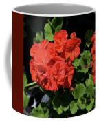 Large Red Begonia Bloom Coffee Mug