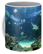 Large Sawfish And Other Fishes Swimming In A Large Aquarium Coffee Mug