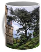 Large Trees At Chateau De Chaumont Coffee Mug