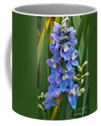 Larkspur And Lady Friend Coffee Mug