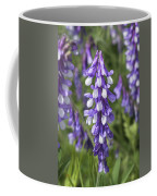 Larkspur Coffee Mug