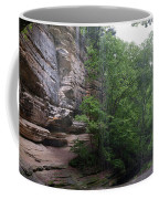 Lasalle Canyon Starved Rock State Park Coffee Mug