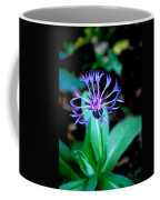 Last Flower In The Garden Coffee Mug