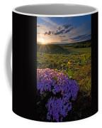 Last Light Of Spring Coffee Mug