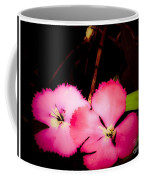Last Of The Pink Dianthus Flowers Coffee Mug