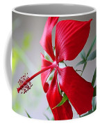 Last Rose Of Summer Coffee Mug